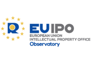 Observatory publications relating to specific issues regarding IP and infringements